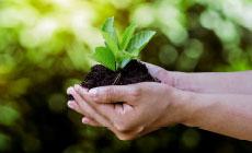 Milieu-investeringsaftrek